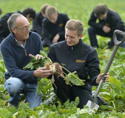 Apprenticeships sow seeds of success – Sainsbury's